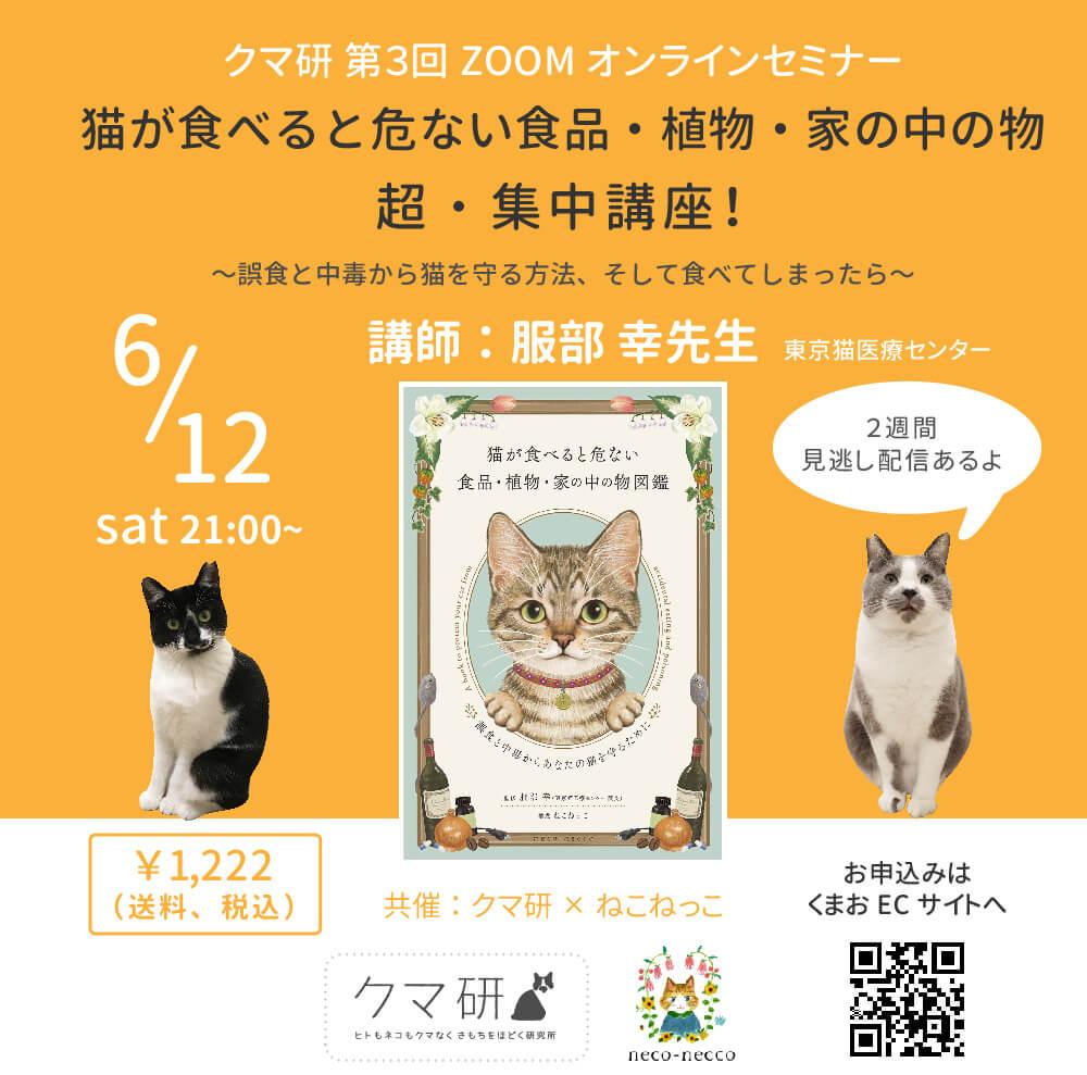 オンラインセミナー「猫が食べると危ない食品・植物・家の中の物 超・集中講座〜誤食と中毒から猫を守る方法、そして食べてしまったら〜」メインビジュアル