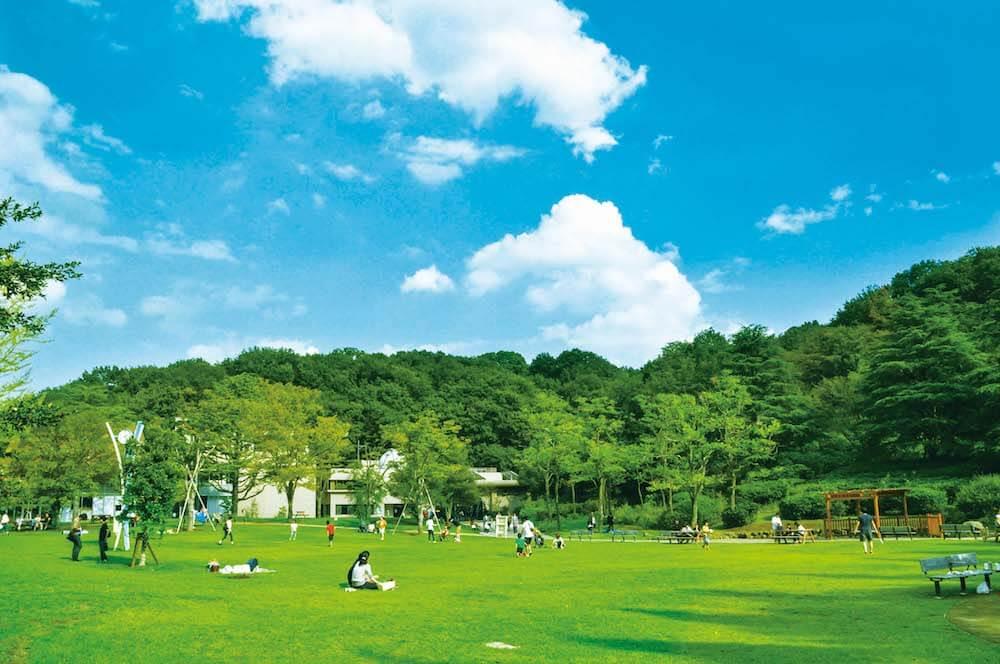 神奈川県川崎市多摩区にある生田緑地中央広場でピックニックをする人々のイメージ
