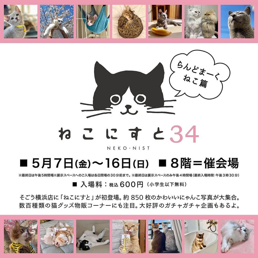猫の写真展示やグッズ販売を行う企画展「ねこにすと(NEKO-NIST)」第34回のメインビジュアル