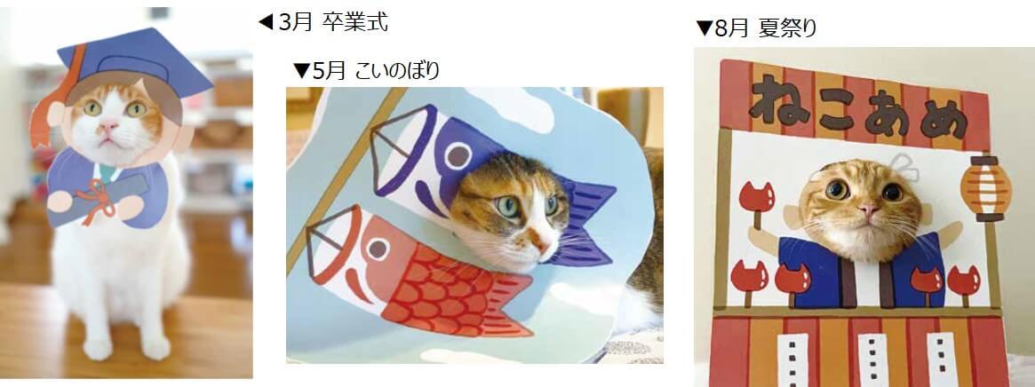 季節イベントのイラストを使った猫の顔出しパネル(はめ猫) by 写真集「むぎゅっとニャ! はめ猫」