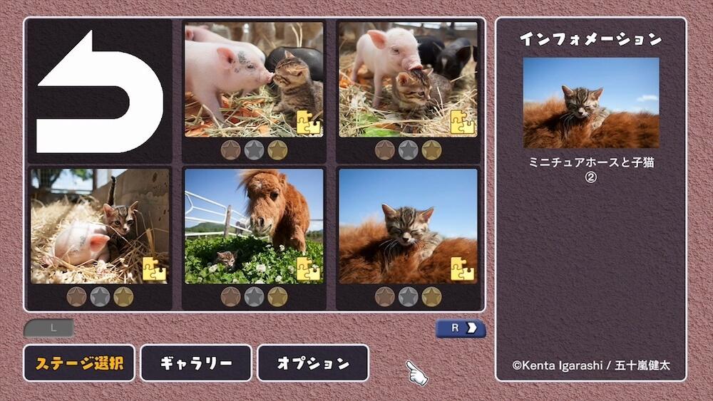 『スエトシ牧場の猫とともだち』 by ジグソーマスターピース