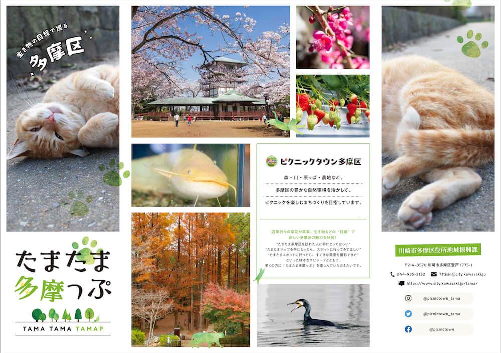 多摩区の周遊マップ「たまたま多摩っぷ」に登場する猫の「たまたま多摩ちゃん」