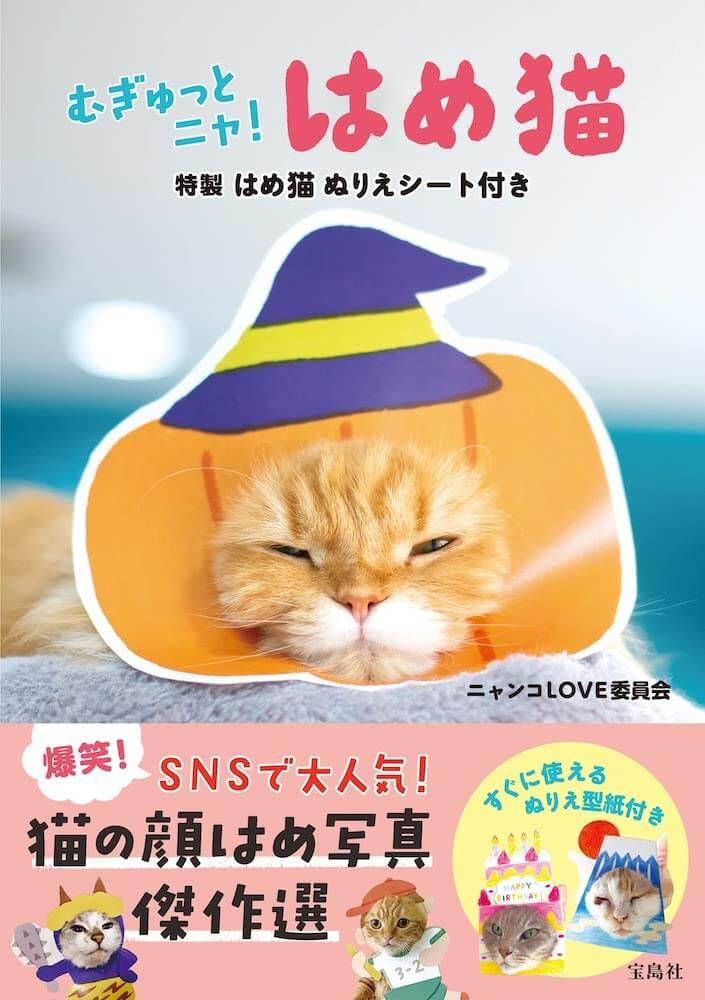 写真集「むぎゅっとニャ! はめ猫」の誌面イメージ