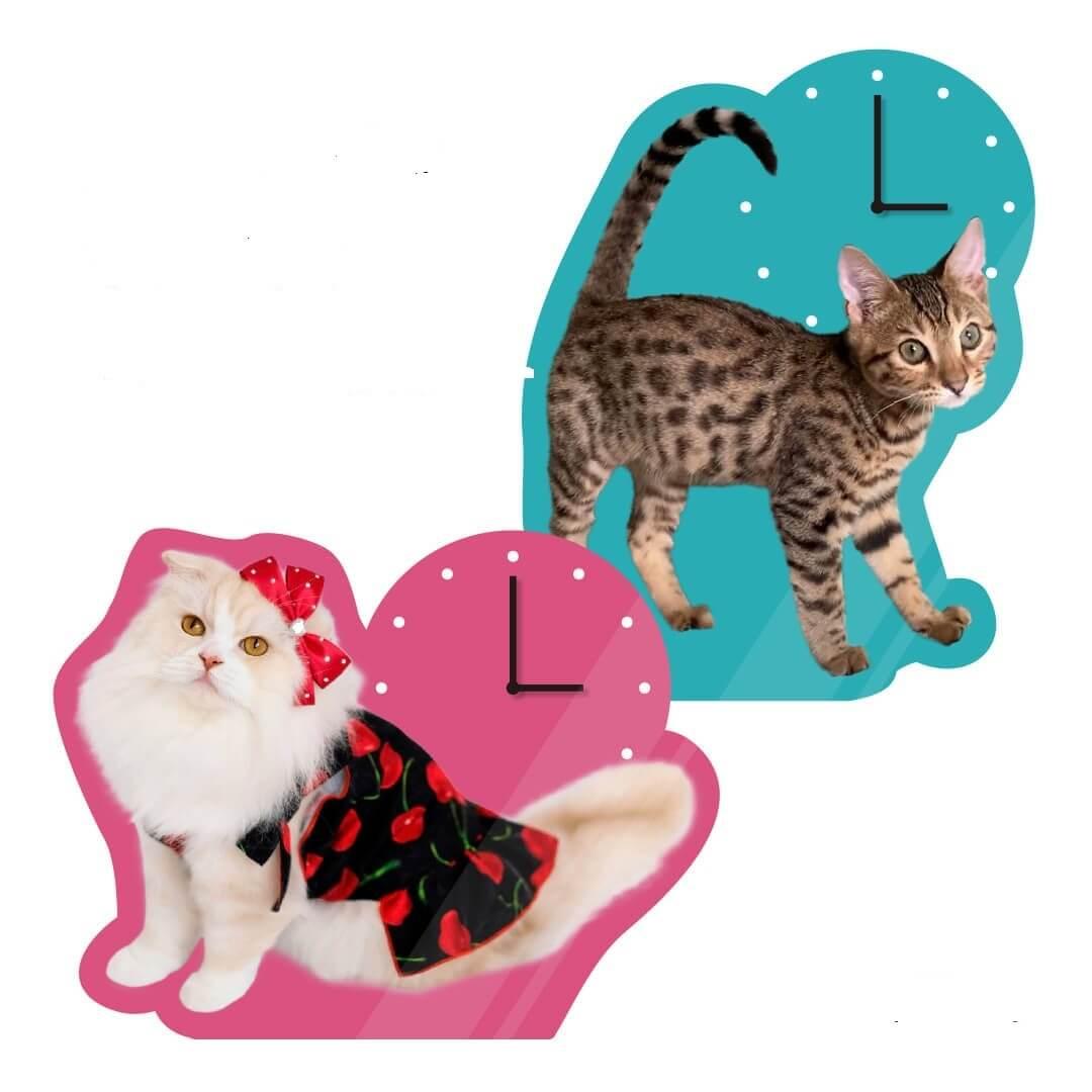 愛猫の写真を使って作るオーダーメイドのアクリル時計