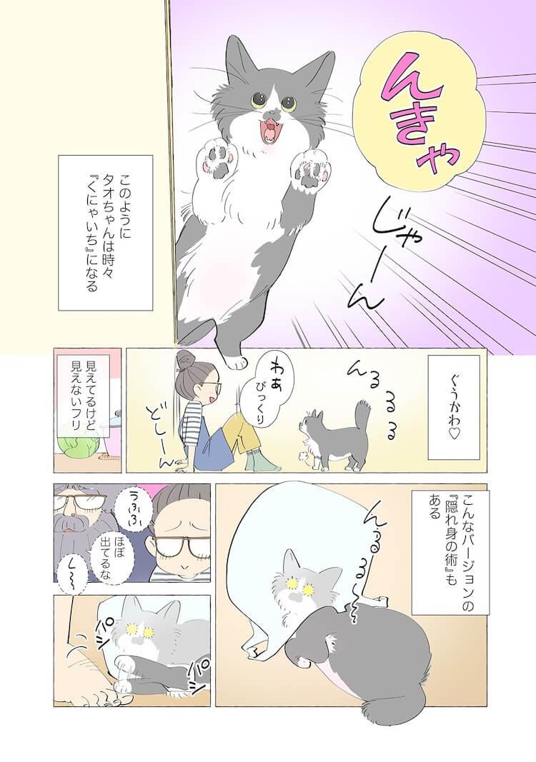 隠れるのが大好きな猫2 by 漫画家、ねこと暮らす ~猫も杓子もタオ日記~のワンシーン