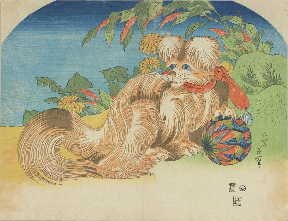 小型犬の浮世絵《狆》 by 葛飾北斎