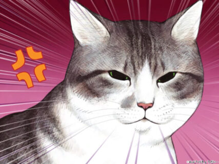 TVアニメ「俺、つしま」のYouTube配信が決定、作品の秘密が詰まったファンブックも発売