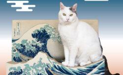 葛飾北斎もびっくりニャ!浮世絵の名作「富嶽三十六景」がネコの爪とぎになって登場