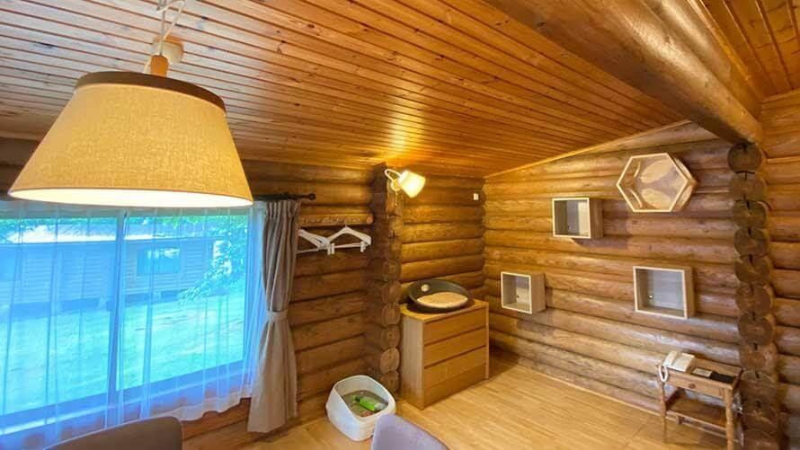 軽井沢プリンスホテル イーストが提供開始した飼い猫と泊まれる宿泊プラン「キャットコテージ」