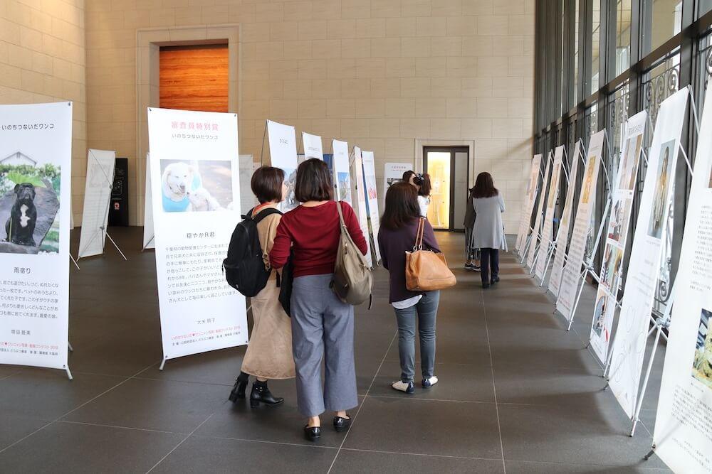「命をつないだ♡ワンニャン写真・動画コンテスト」優秀作品展の会場イメージ