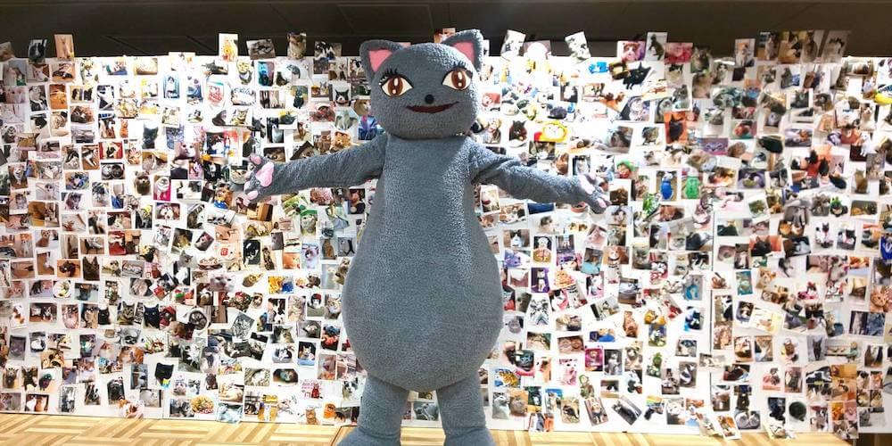 愛猫の写真を貼れるボード「にゃんピクボード」 by にゃんだらけ