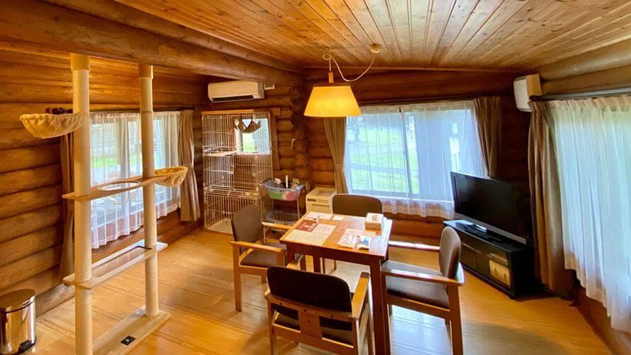 飼い猫と一緒に泊まれる「キャットコテージ」の客室イメージ by 軽井沢プリンスホテル イースト