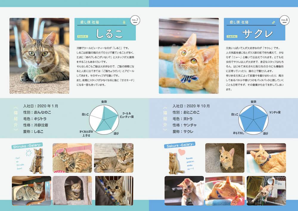 社猫の紹介ページ by しまや出版「癒し課」