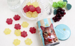 かわいい肉球型のフルーツグミが猫スイーツブランドから発売!缶容器はペン立てにも使えるニャ