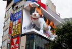 【映像あり】新宿アルタ近くに巨大な三毛猫が出現!眠ったり通行人に話しかけることもあるニャ