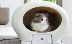 これ一台で猫の夏冬対策!冷温ヒーターを搭載したペットハウス「アニマルカプセルホテル」