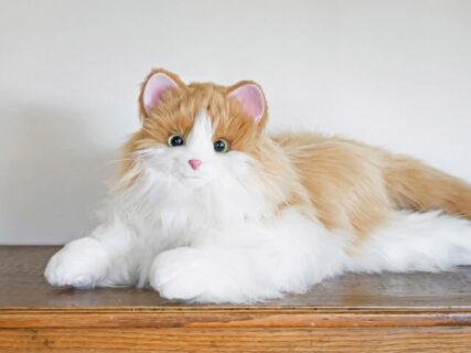 まるで本物みたい!鳴き声やしっぽの動きが変化する猫型ロボット、新色のブラウンカラーが登場