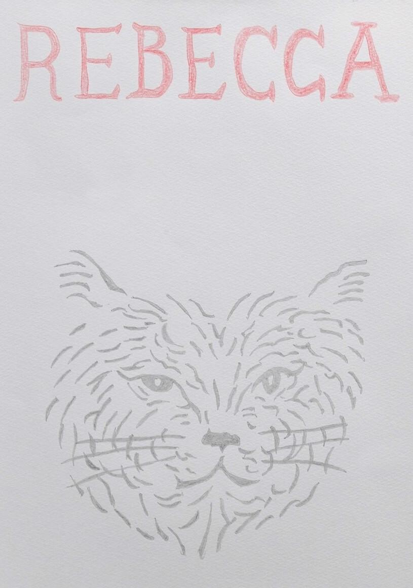 俳優の浅野忠信が描く猫のイラスト「REBECCA(レベッカ)」