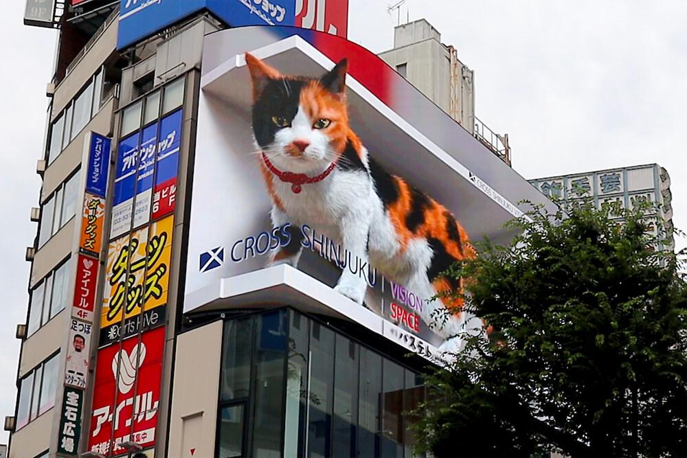 ビルの上から乗り出しているように見える巨大な三毛猫 by 街頭ビジョン「クロス新宿ビジョン」