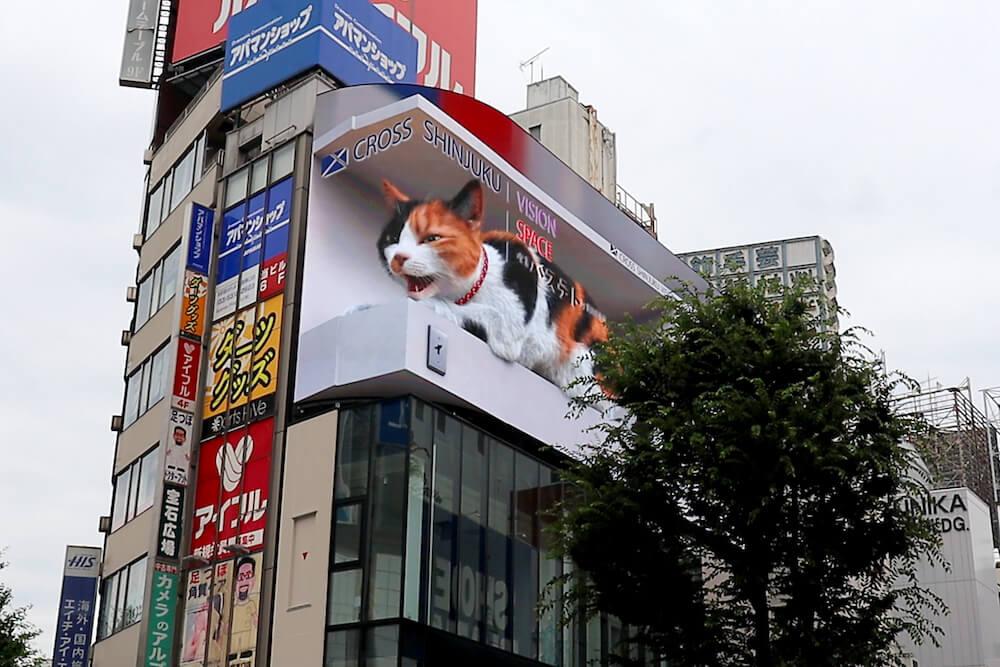 リアルな猫の3D映像が見られるデジタルサイネージ「クロス新宿ビジョン」