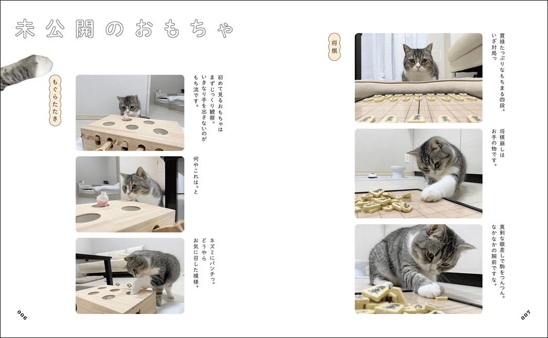 YouTubeの人気猫もちまる(もち様)の写真集「もちまる日記」中面イメージ
