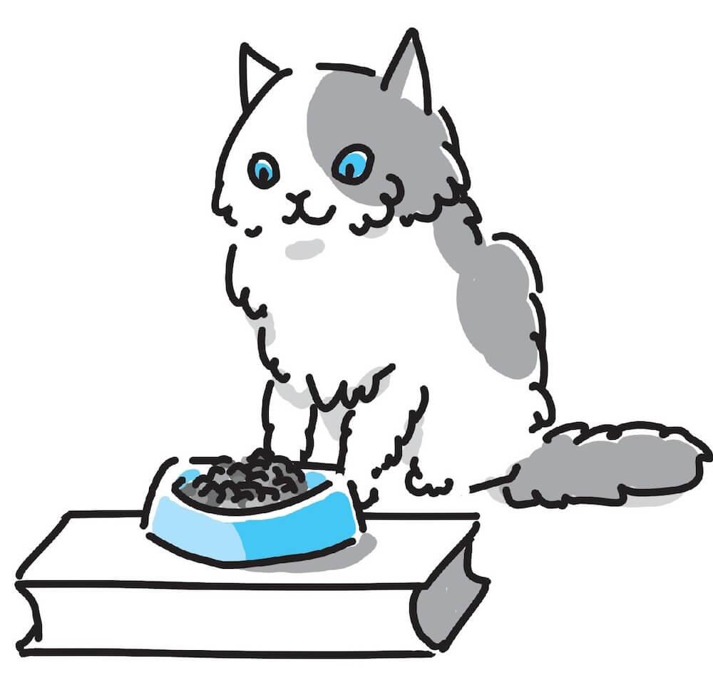ご飯を食べようとする猫のイラスト「猫にいいこと大全」