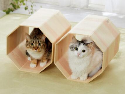 ペピィから新しい猫用品が登場!ボックス付き木登りタワー&高級木材を使ったトンネルベッド
