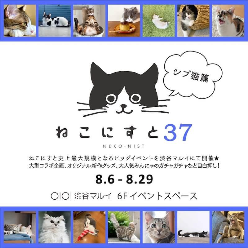 猫イベント「ねこにすと37 〜シブ猫篇〜」メインビジュアル