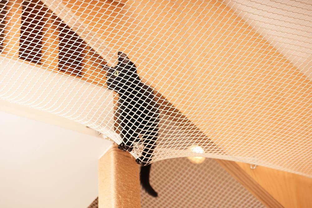 猫用のハンモック「ニャンモック」の上をあるく猫 by ネコリパランド(NECOREPA LAND)
