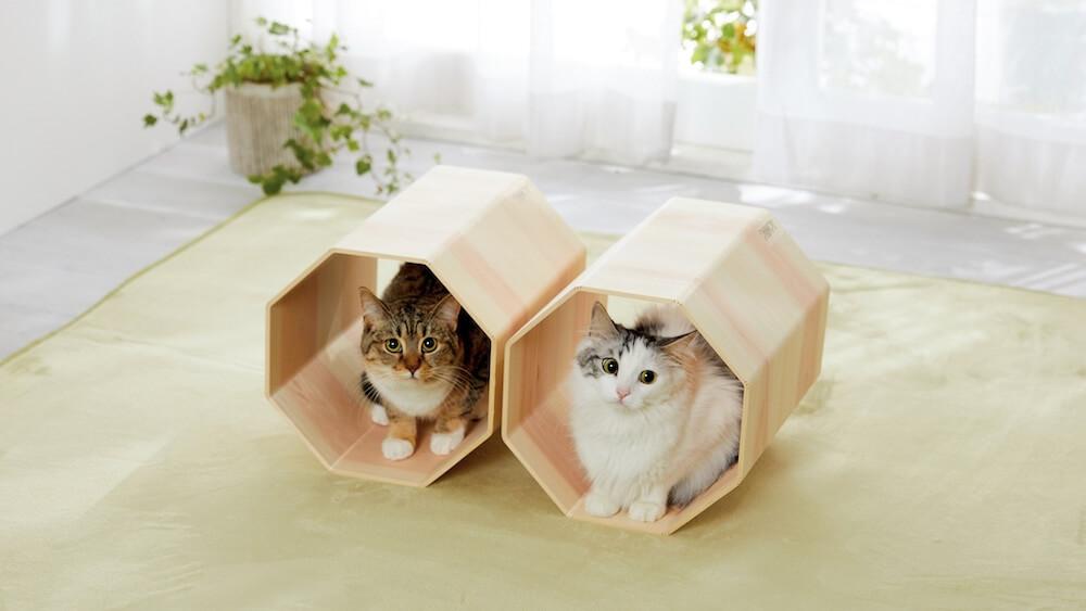 吉野桧のトンネルベッドを使用する猫のイメージ