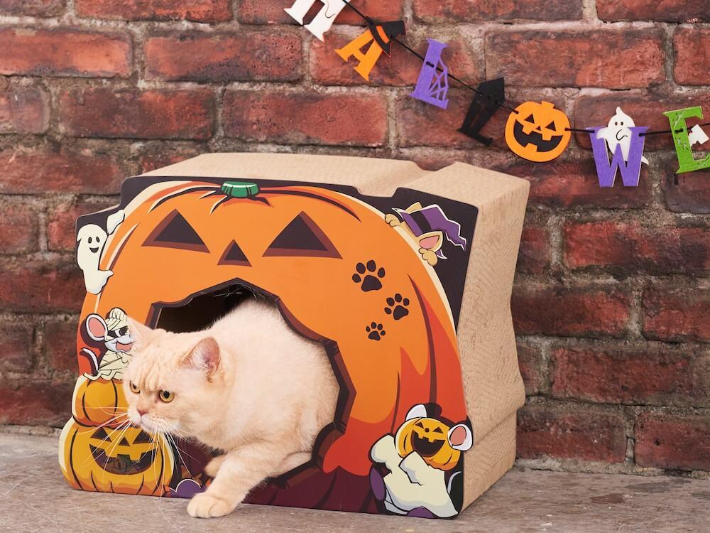 ハロウィンデザインの猫用爪とぎ使用イメージ by オーサムストア