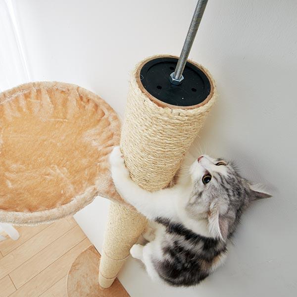 おうちで木登りタワー上部のハンモックに辿り着いた猫