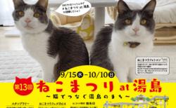猫が似合う街・湯島で13回目の「ねこまつり」が開催!今回は参加店舗をめぐるオンラインツアーも