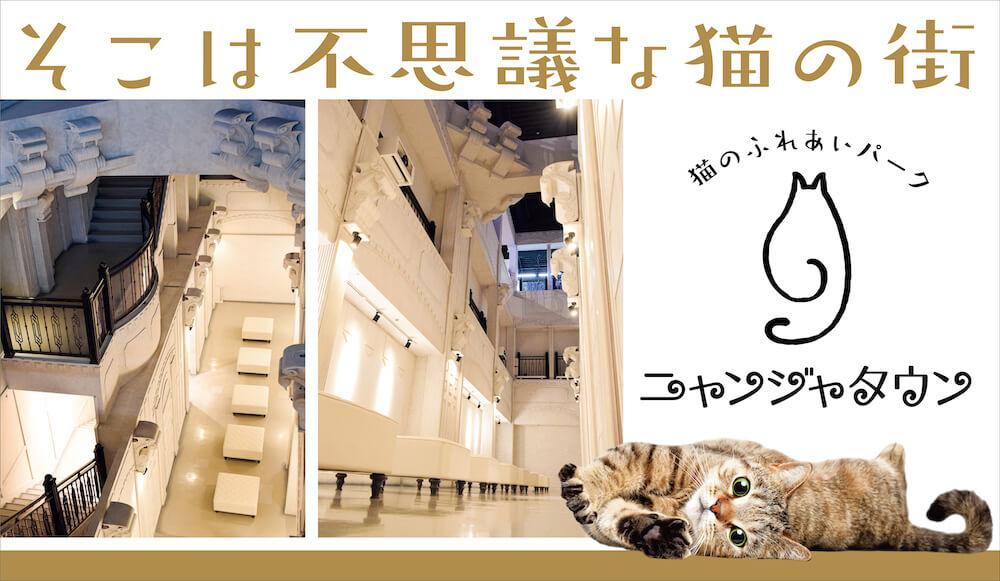猫のふれあいパーク「ニャンジャタウン」メインビジュアル