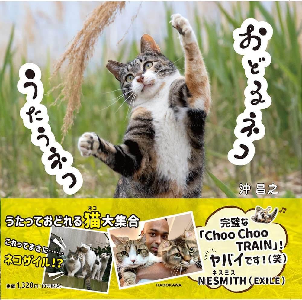 沖昌之さんの猫写真集『おどるネコうたうネコ』表紙イメージ(帯あり)