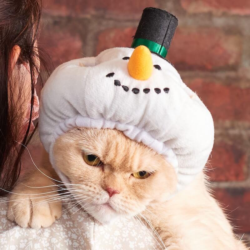 猫用帽子ペットヘッドギア スノーマン by オーサムストア&オーサムペッツ