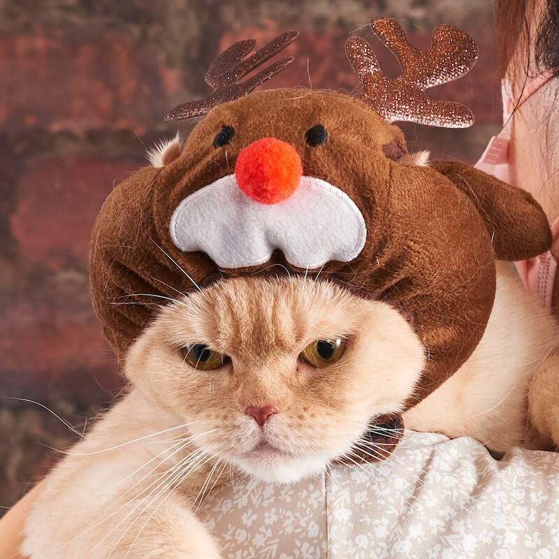 猫用帽子ペットヘッドギア トナカイ by オーサムストア&オーサムペッツ