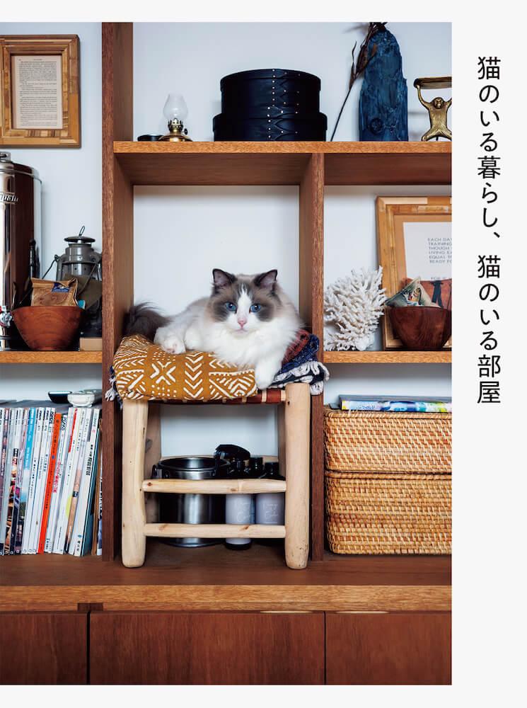 書籍『猫のいる暮らし、猫のいる部屋』表紙イメージ