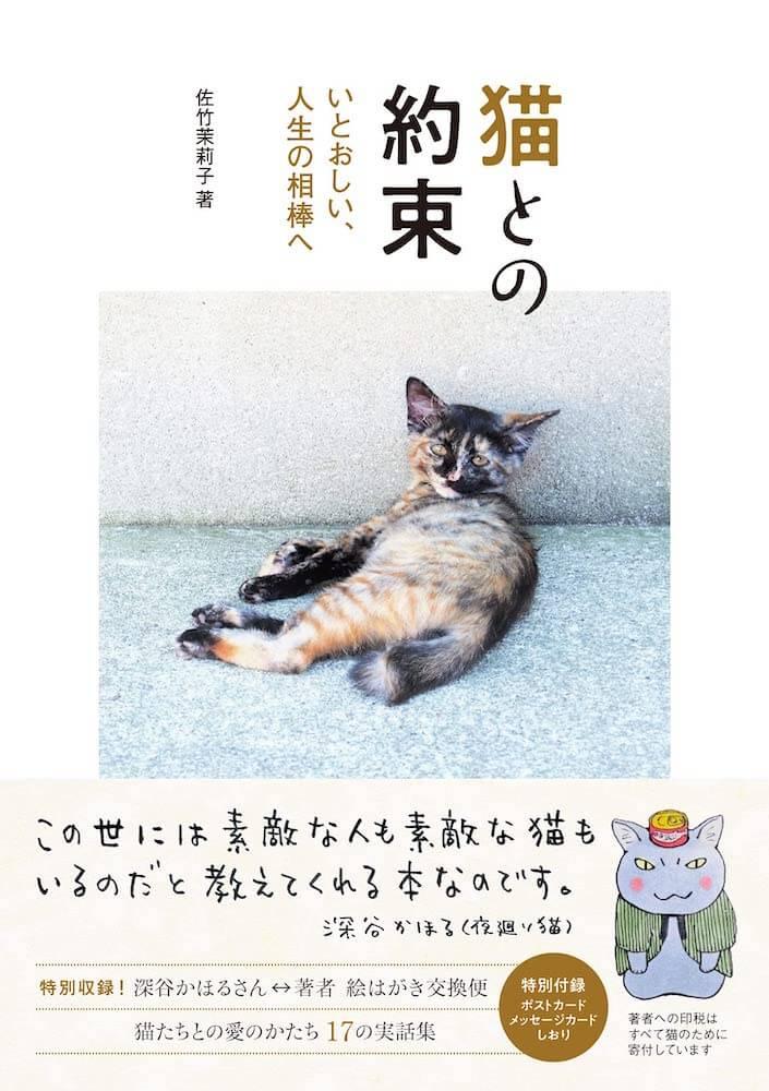 佐竹茉莉子著17の保護猫エピソードを綴った書籍「猫との約束」表紙イメージ