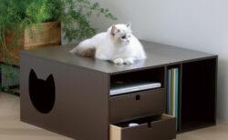 猫が中に入ると秘密の隠れ家に!ディノスから人も猫も使えるテレビ台とミニテーブルが登場